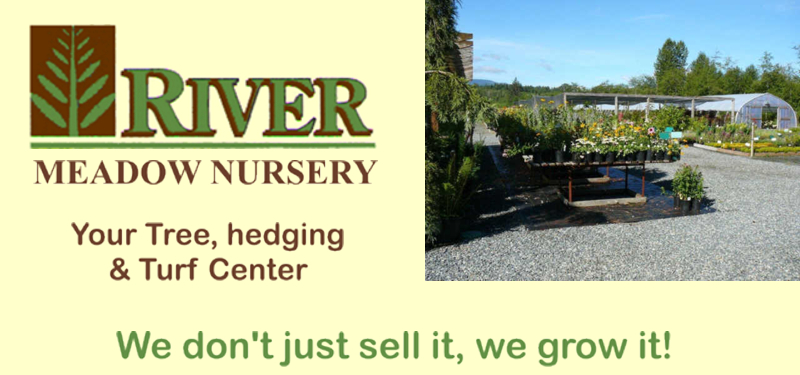River Meadow Nursery Farms Kathy Samsom Niccolas Sod Tree Farm Vancouver Island Turf Trees Courtenay Bc